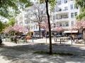 Böhmischer Platz / Richardplatz